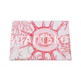 "Кухонные полотенца 12 штук 50х70 ""VALLEPIANO"" Артикул: Диннер кораллы красные"